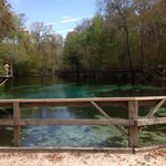 Blue Springs Park diving/jumping pier.