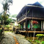 casa verde acuali