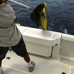 Las Islas Lodge Sportfishing