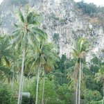 View from resort to Limestone Cliffs