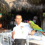 WAITER MIGUEL  WITH THE MACAW