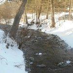 stream along property