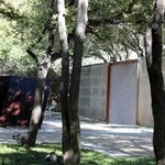 Dallas Museum Of Art - The Sculpture Garden