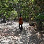 Amadu - our wonderful guide