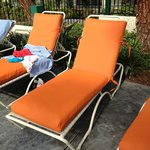 great new pool chair covers!