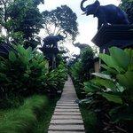 each elephant is each villa