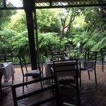 nice garden restaurant.