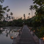 lagoon path