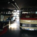 zwei Auwärter Reisebusse