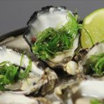 Freshly shucked oysters with wakame/ponzu