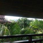 Blick vom Balkon in Palmen und die Berge