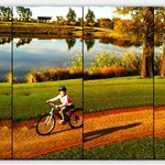 Bike riding at Fancourt