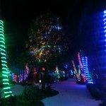 Dekoration der Insel zu Weihnachten