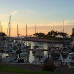 the marina at sunset
