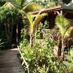 L'accès  à la case créole