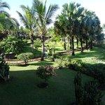 jardin superbe