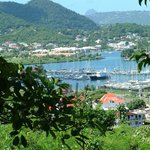 A tree top view overlooking Stephanie`s Hotel and the Rodney Bay Marina