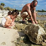 Looking for hermit crabs and shells at the rocky beach.