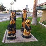 Cute carved Black Bears outside entrance.