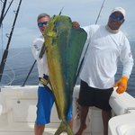 one of the mahi