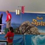 sea Lions special exhibit
