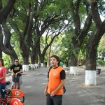 A daily trip from the hostel, a bike tour to the south or the north
