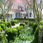 Piney Grove at Southall's Plantation - Boxwood Garden