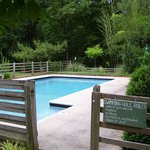 Piney Grove at Southall's Plantation - Swimming Pool