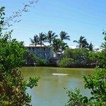 Coconut Coast from across the salt pond