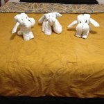 Animal towels
