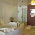 Suite's Jetted Tub & Walk-in Shower