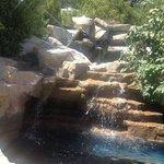 Waterfall outside Garden Cafe