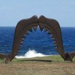 uma das várias esculturas legais na parte externa do Museu dos Tubarões