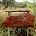 Welcome to Stone Hill!