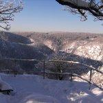 Winter an der Rosstrappe 2
