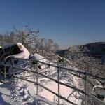 Winter an der Rosstrappe 4