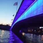 Pont Du Roi Albert at night.