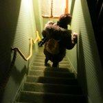 Die Treppe hinunter!