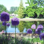 Gardens at Beale Park