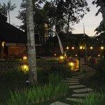 Gardens & Walkways to Villas