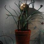 Сумка-цветочный горшок