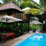 Baumhaus mit Pool