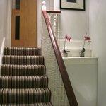 Scorcio delle scale