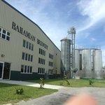 Bahamian Brewery
