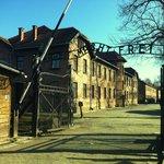 Auschwitz-Birkenau tours