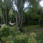 rede no jardim