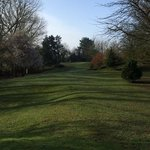 the one hole golf course at Crab Manor