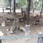 Rabbit enclosure