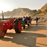 Tractor with Cape Kidnappers behind