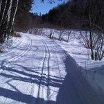 The Ski Trails